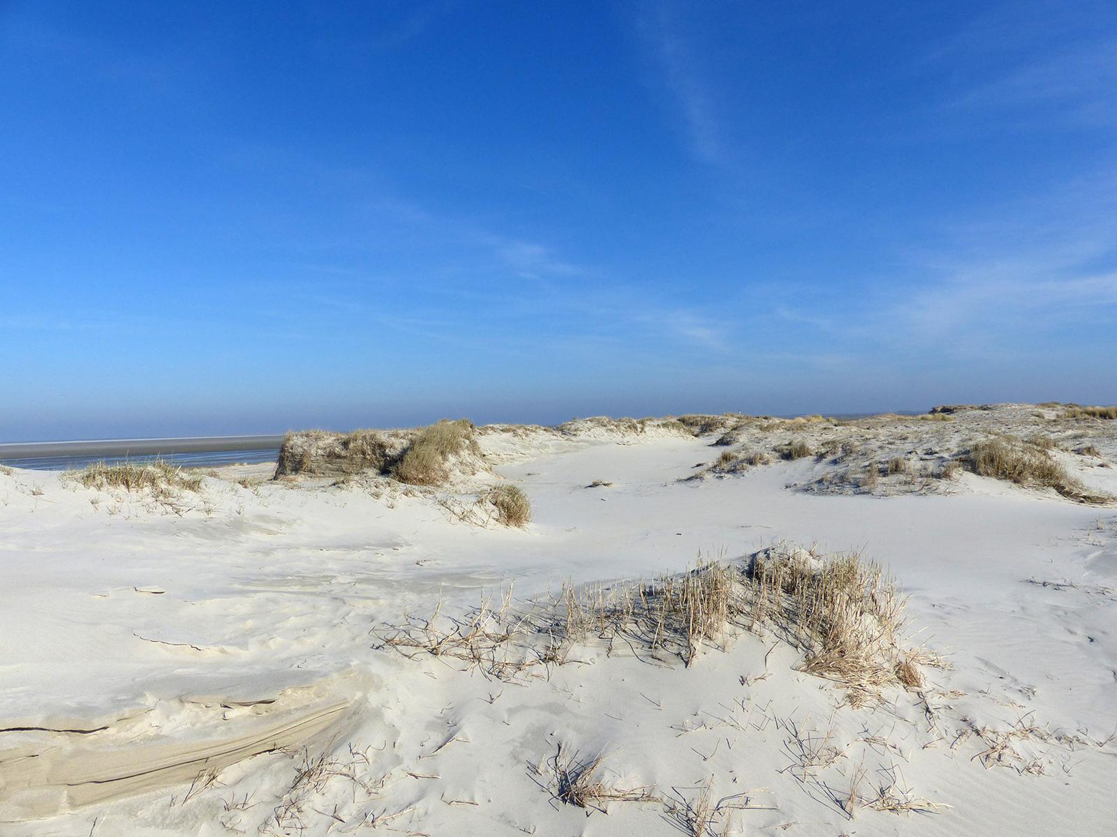Eine frische Brise Meeresluft, den Wind in den Haaren, die Füße im Sand vergraben - Urlaub pur!